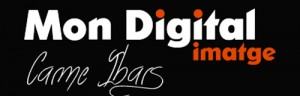 DN2014-MonDigital-Logo