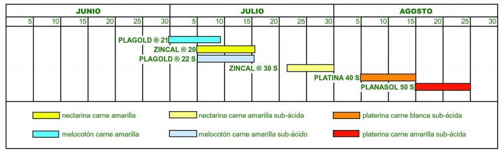 SM2013-Planasa-2