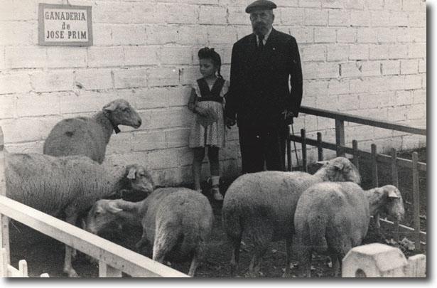 Exposició ramadera l'any 1946
